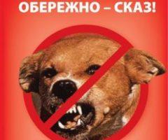Інформація щодо заходів  локалізації та ліквідації вогнища сказу в межах вулиці Герасима Кондратьєва до Сумського аеропорту.