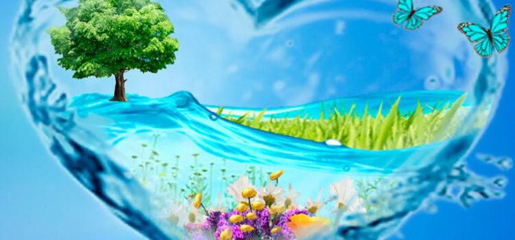 22 квітня -Всесвітній день Землі!